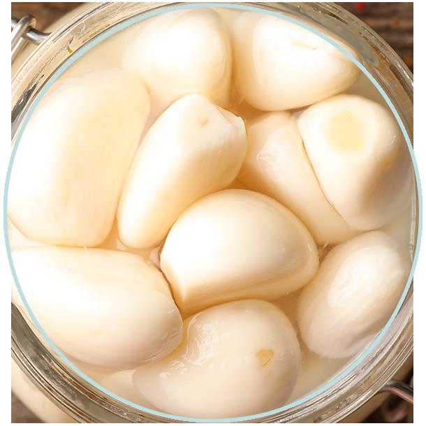 سیر | garlic