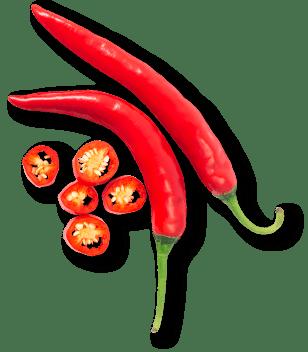 فلفل | pepper