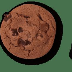 کوکی cookie