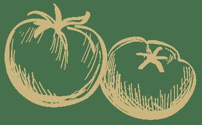 گوجه tomato