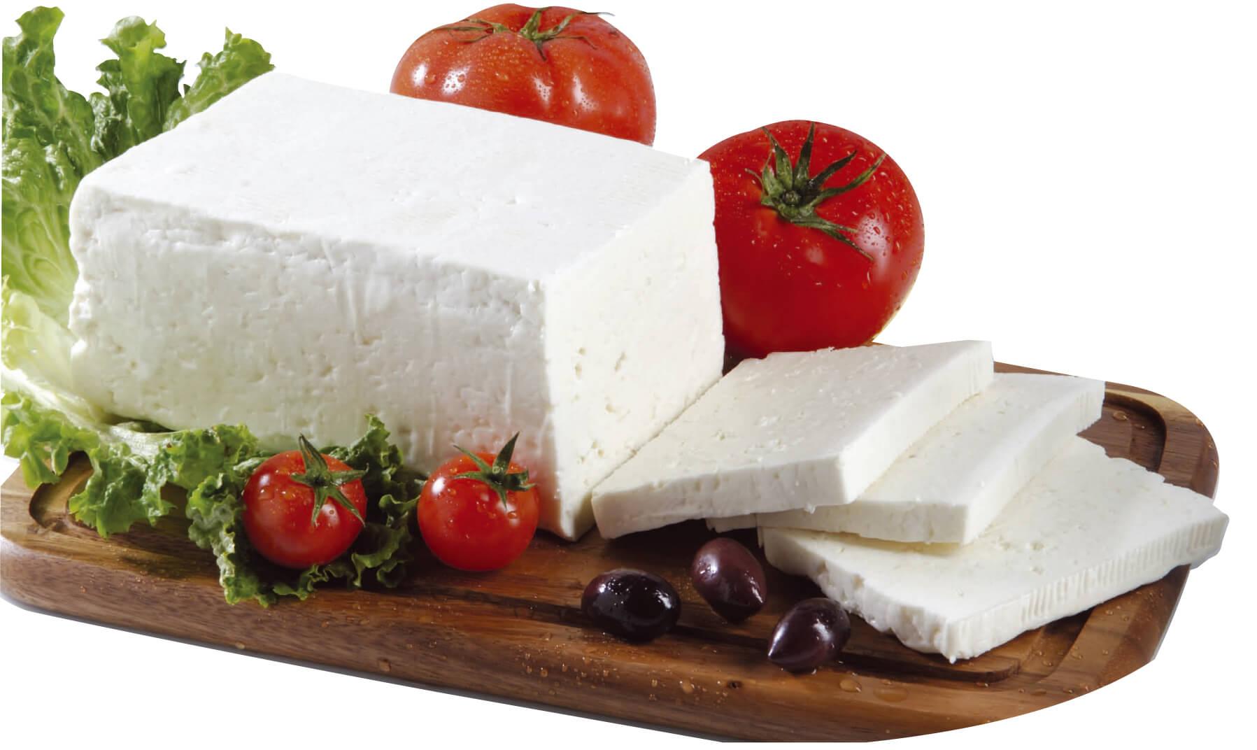 پنیر کم چراب بهترین هله هوله رژیم لاغری