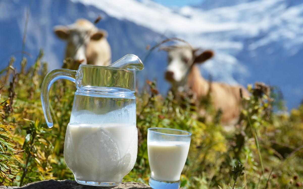 شیرپرچرب یا کم چرب